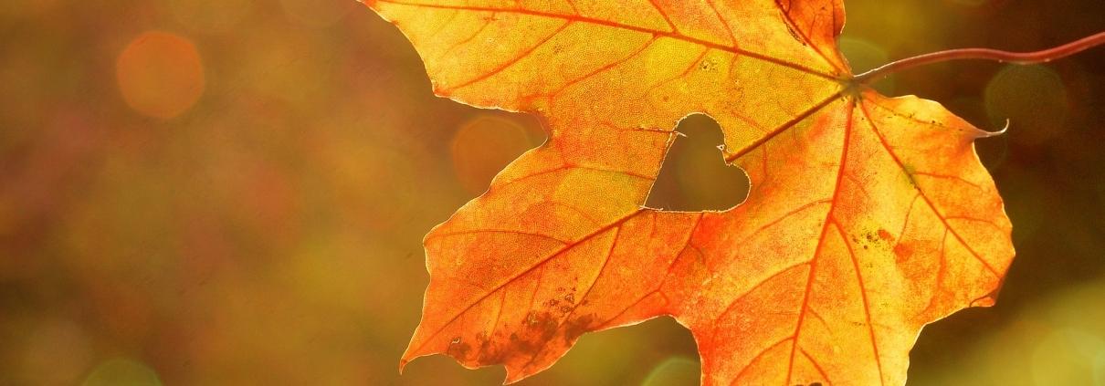 Herbst-Herz